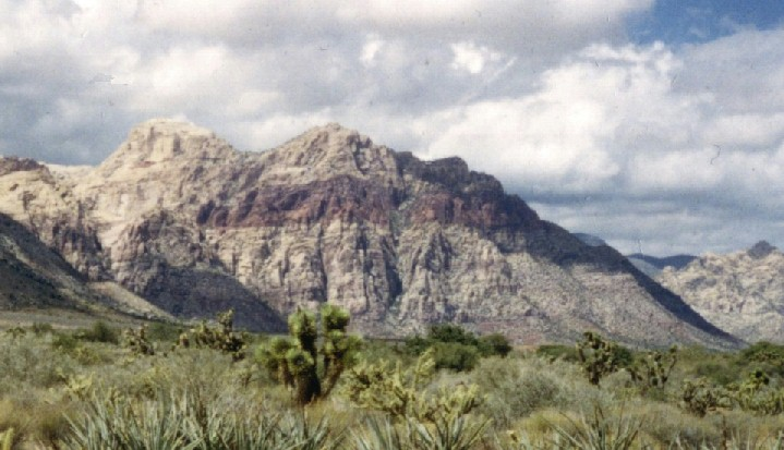 Nevada Desert~ Red Rock Canyon